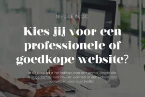 Professionele website vormgever